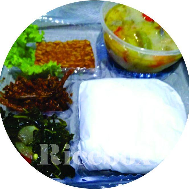 ricebox1