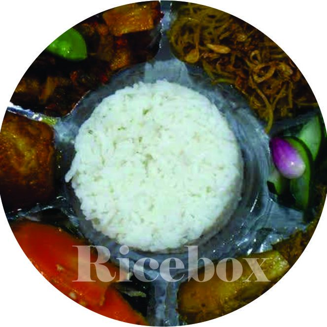 ricebox2